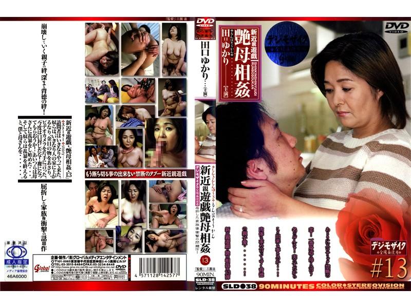 新近親遊戯 艶母相姦 (13) 田口ゆかり
