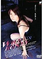 「若妻探偵 ワイルドハニー」のパッケージ画像