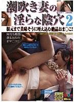 潮吹き妻の淫らな陰穴 2 ダウンロード