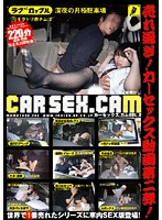 CAR SEX.CAM VOL.2
