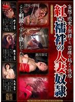紅い襦袢の人妻奴隷 ダウンロード