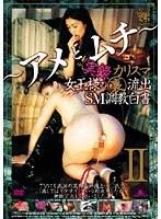 実録 カリスマ女王様の(裏)流出 SM調教白書 〜アメとムチ〜 II ダウンロード