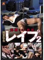 「蹂躙される肉体 完全なるレイプ 2」のパッケージ画像