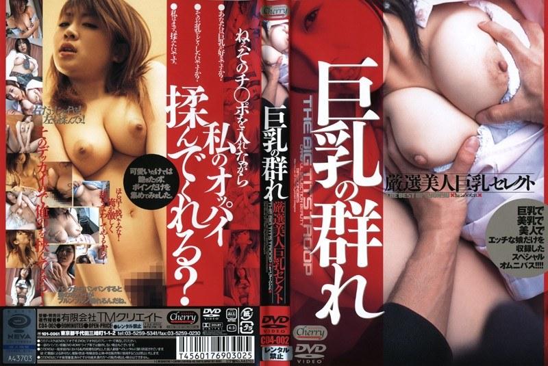 巨乳の看護婦、飯島奈緒出演の無料熟女動画像。巨乳の群れ 厳選美人巨乳セレクト