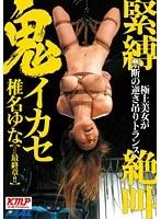 「緊縛絶叫鬼イカセ 椎名ゆな」のパッケージ画像