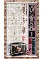 (178rap005)[RAP-005] 緊縛食堂 安藤エリカ ダウンロード