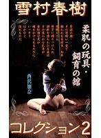(178sb00002)[SB-002] 雪村春樹コレクション2 柔肌の玩具・飼育の館 西沢加奈 ダウンロード
