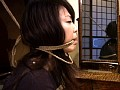 (178scp015)[SCP-015] 雪村春樹 淫縛帖 5-鏡羞恥- ダウンロード 12