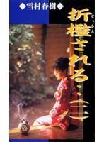 (178ssi002)[SSI-002] 折檻される… (二) ダウンロード
