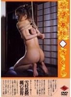 (178wd006)[WD-006] 監禁妄想◆さくら ダウンロード