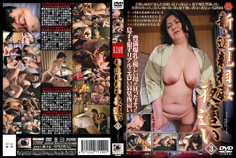 爆乳のお母さん、広中涼子出演の近親相姦無料jyukujyo動画像。新・近親相姦 夜這い 3