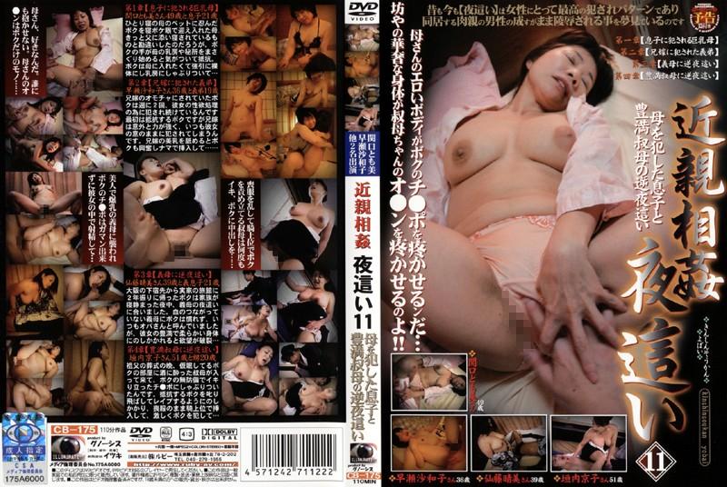 寝室にて、淫乱の熟女、早瀬佐和子出演の騎乗位無料動画像。近親相姦 夜這い11