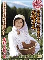 全国熟女捜索隊 田舎の茶畑でお茶摘みするお母さん ダウンロード