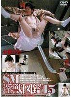 SM淫獣図鑑 15 小泉リカ ダウンロード