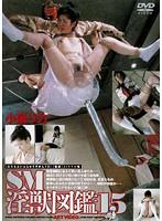 (180advr00180)[ADVR-180] SM淫獣図鑑 15 小泉リカ ダウンロード