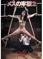 「メスの牢獄 2 岡山涼花」のパッケージ画像