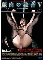 (180advr00557)[ADVR-557] 麗肉の獄舎 5 柏木リエ ダウンロード