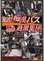 「復活!!痴漢バス過激集団 3」のパッケージ画像