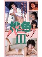 桃色パニック III ~エクスタシーパラダイス~