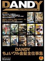 「DANDYちょいワル金髪全仕事集」のパッケージ画像