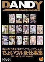 DANDY8周年公式コンプリートエディション ちょいワル全仕事集<2013年7月?2014年6月>