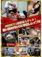 (1dvdps00961)[DVDPS-961] SHIBUYA泥酔素人ギャル! 酔い覚め代わりに中出しレイプ 2 ダウンロード