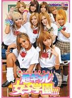 「極エロJK勢揃い!!超ギャル女子学園!!!」のパッケージ画像