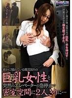 「密かに憧れている顔見知りの巨乳女性と突然のエレベーターの急停止で密室空間に2人きりに…」のパッケージ画像