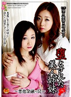 堕とされた美人姉妹 〜悪徳金融の罠〜 ダウンロード