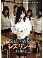 「女教師の成熟した体を興味本位でレズリンチする女生徒」のパッケージ画像