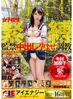 (1iene00673)[IENE-673] 今村加奈子 女子校生緊縛監禁中出し孕ませ調教 ダウンロード
