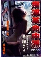痴漢革命中派 VOL.9 ダウンロード