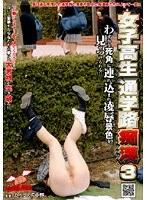 女子校生通学路痴漢 3