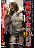 「電流イキ女体狂乱列車」のパッケージ画像