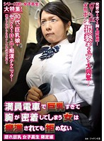 Busty School Girl in Molester Train