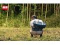 女子○生の野ション尻に我慢できず媚薬を塗ったチ○ポで即ハメ!逃げても消えぬ催淫効果で発情オナニーが止まらない 20