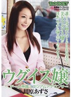 ウグイス嬢 ○○ドーム専属スタジアムアナウンサー 川原あずさ ダウンロード