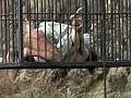 Black Sod 空中拷問アクメ刑務所 17
