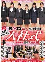「祝入社!!2013年度 SOD新人女子社員 入社式+はじめてのAV 業務体験に180分大赤面SP」のパッケージ画像