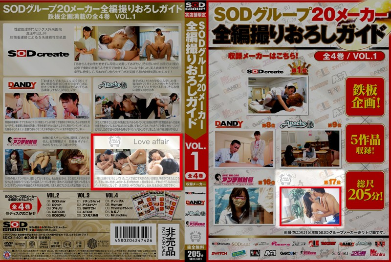 [SDXX-14015] Love affair 遠野美帆