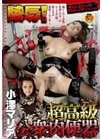 「陵辱!超高級公衆肉便器 小澤マリア」のパッケージ画像
