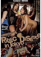 公開BDSM調教 ダウンロード