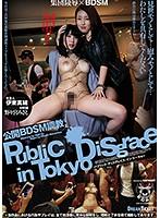 公開BDSM調教 野々宮みさと 伊東真緒 ダウンロード