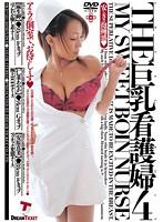 THE 巨乳看護婦4 ダウンロード