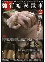 「強行痴○電車 2」のパッケージ画像