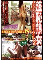 「羞恥熟女 ~公衆の場での破廉恥行為に膣を濡らす女たち~ 2」のパッケージ画像