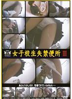 「女子校生失禁便所 3」のパッケージ画像