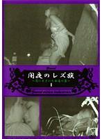 「闇夜のレズ族 1」のパッケージ画像