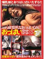 「爆乳娘!!巨乳なおっぱいGAL!! おっぱい揉みまくり、揺れまくり!」のパッケージ画像