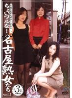 ちょいワルな!名古屋熟女たち vol.1 ダウンロード